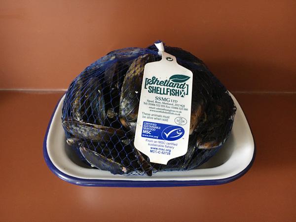 秋冬の旬の食材、ムール貝
